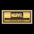 Stan Lee Spider-Man // Stan Lee Signed Photo // Custom Frame