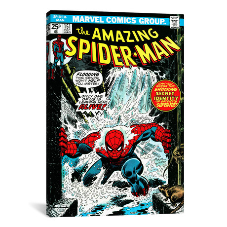 "Spider-Man Issue Cover #151 (26""W x 18""H x 0.75""D)"