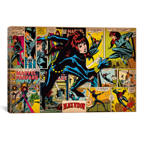 "Black Widow // Retro (18""W x 26""H x 0.75""D)"