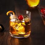 Nova Crystal Old Fashioned Whiskey Glasses // 10 oz // Set of 4