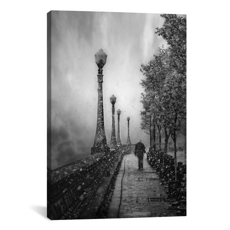 "Spring Snow // David Senechal Photographie (26""W x 18""H x 0.75""D)"
