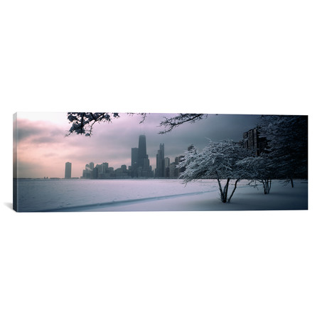 "Snow covered tree on the beach with a city in the background // Panoramic Images (12""W x 36""H x 0.75""D)"