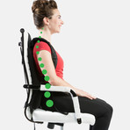 Posture Keeper // 3-in-1 Lumbar Support System