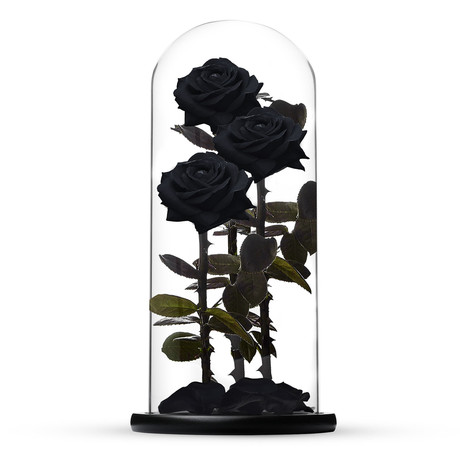 Everlasting Rose TRIO // Black (Small)