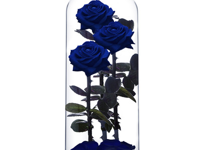 Photo of ROSEPHORIA Everlasting Roses Everlasting Rose TRIO // Blue (Small) by Touch Of Modern
