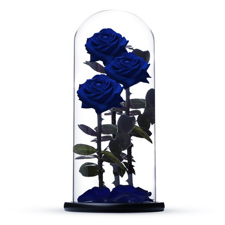 Everlasting Rose TRIO // Blue (Small)