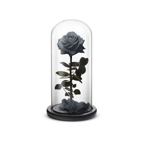 Everlasting Rose // Black (Small)