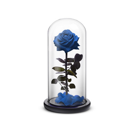 Everlasting Rose // Blue (Small)