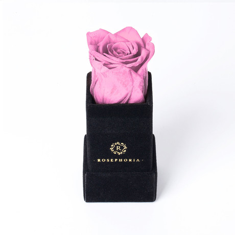 Ring Box // Pink