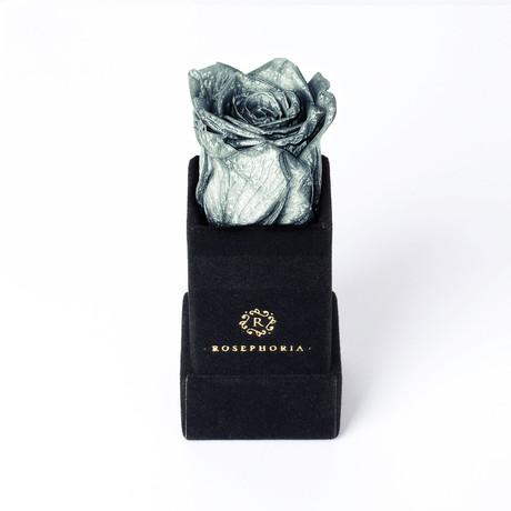 Ring Box // Silver