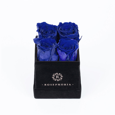4 Rose Box  // Blue