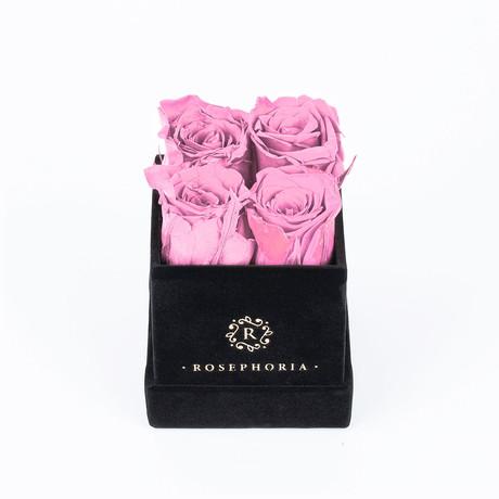 4 Rose Box // Pink