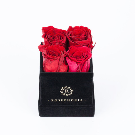 4 Rose Box  // Red