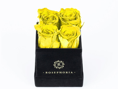 Photo of ROSEPHORIA Everlasting Roses 4 Rose Box // Yellow by Touch Of Modern