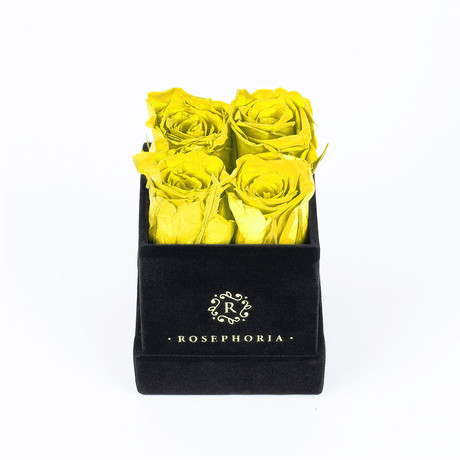 4 Rose Box  // Yellow