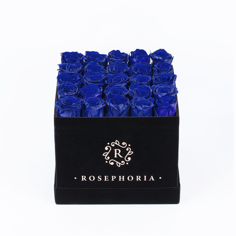24 Rose Square Box  // Blue