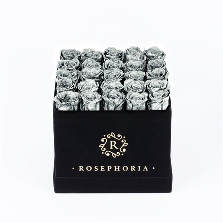 24 Rose Square Box // Silver