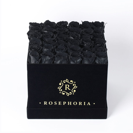 36 Rose Square Box // Black