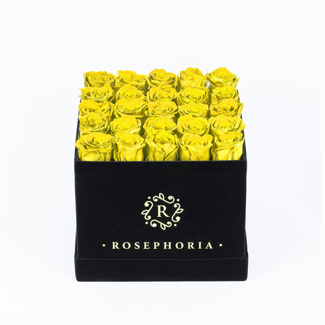 24 Rose Square Box  // Yellow