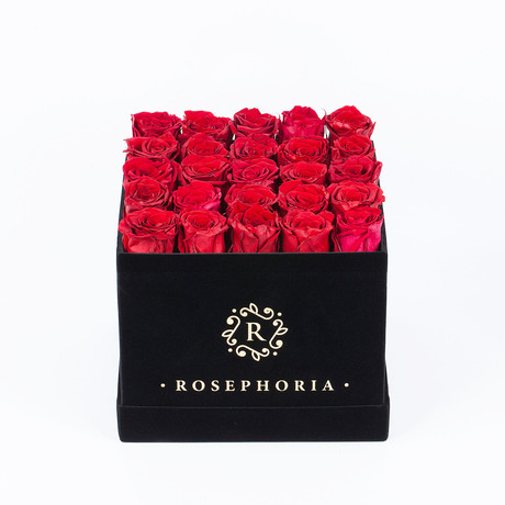 24 Rose Square Box // Red