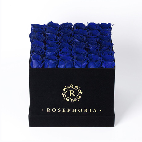 36 Rose Square Box // Blue