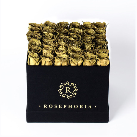 36 Rose Square Box // Gold