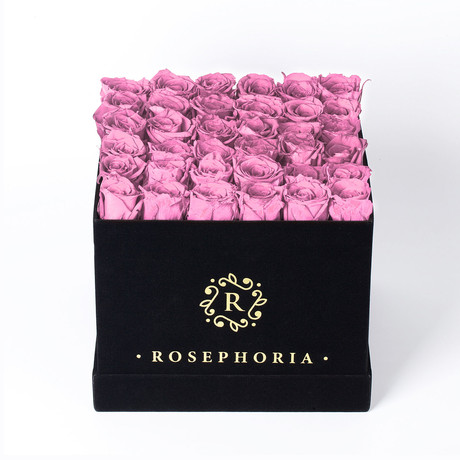 36 Rose Square Box // Pink
