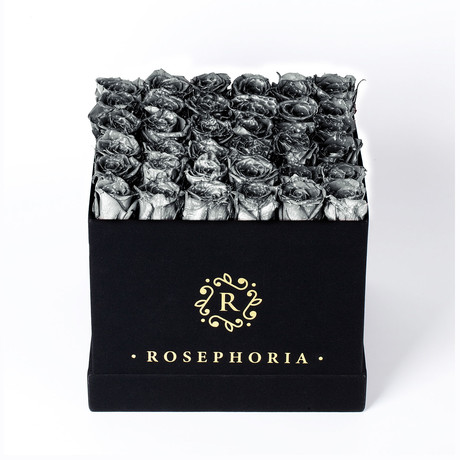 36 Rose Square Box // Silver