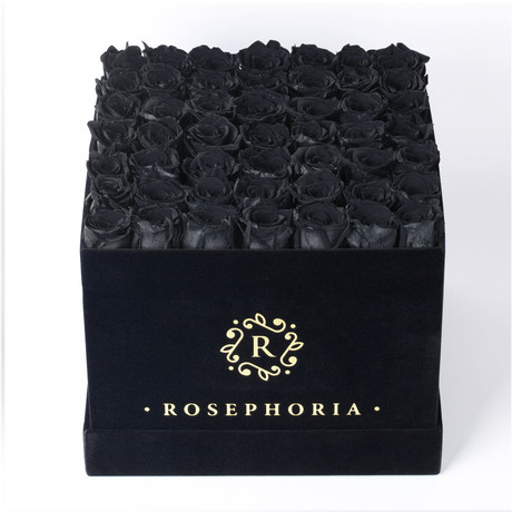 49 Rose Square Box // Black