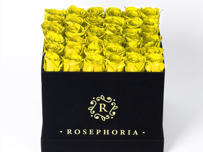 ROSEPHORIA Everlasting Roses 36 Rose Square Box // Yellow by Touch Of Modern - Denver Outlet
