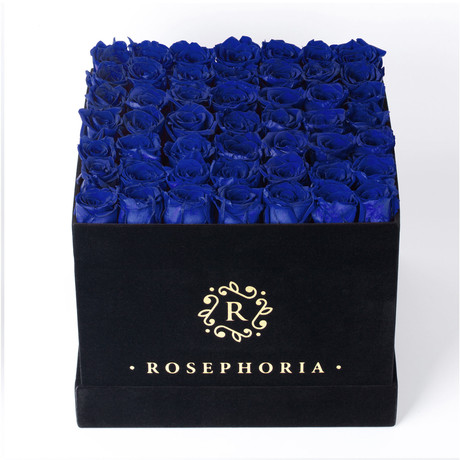 49 Rose Square Box // Blue