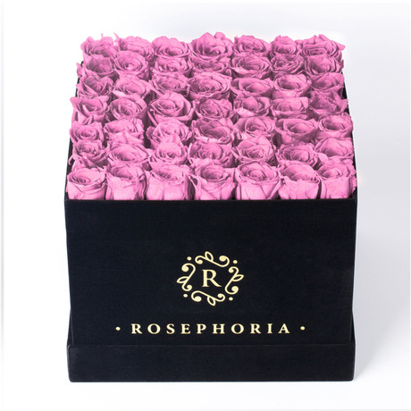 49 Rose Square Box // Pink
