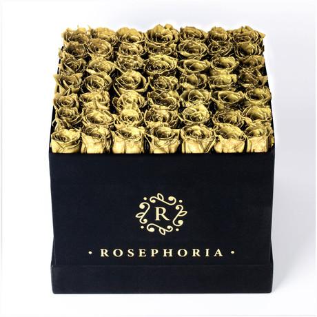 49 Rose Square Box // Gold