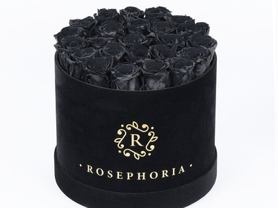 ROSEPHORIA Everlasting Roses 24 Rose Round Box // Black by Touch Of Modern - Denver Outlet