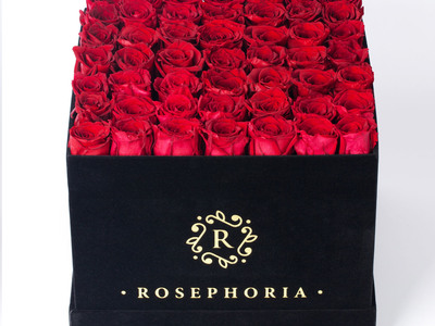 ROSEPHORIA Everlasting Roses 49 Rose Square Box // Red by Touch Of Modern - Denver Outlet