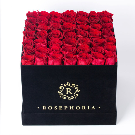 49 Rose Square Box // Red
