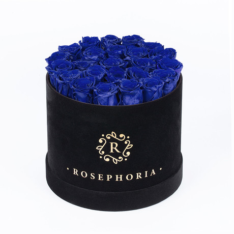 24 Rose Round Box // Blue
