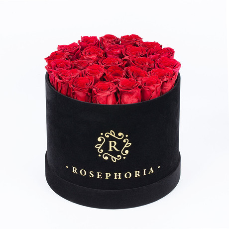 24 Rose Round Box // Red