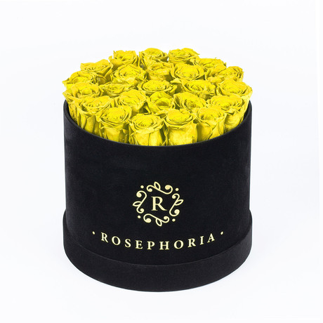 24 Rose Round Box // Yellow