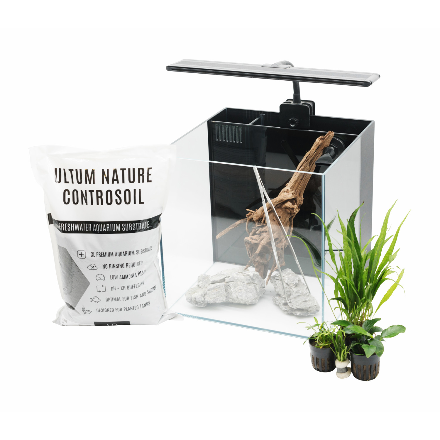 98eddca992a Aquascaping Starter Pack    All in One - Buce Plant - Touch of Modern
