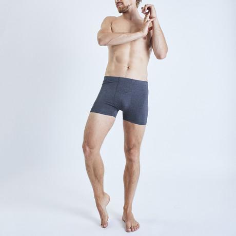 Zhu Bamboo Boxer Shorts // Gray (S)