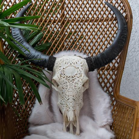 Hand Carved Buffalo Skull // Lotus 1