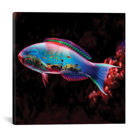 """Fish (18""""W x 18""""H x 0.75""""D)"""