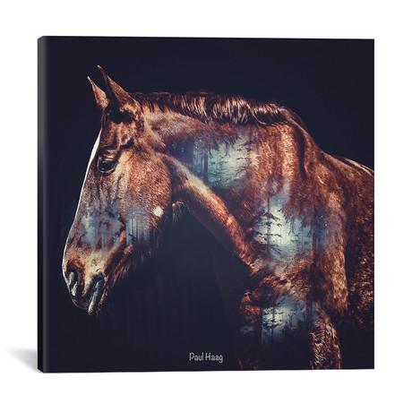"""Horse // Paul Haag (18""""W x 18""""H x 0.75""""D)"""