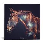 """Horse (18""""W x 18""""H x 0.75""""D)"""