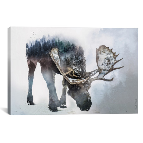 "Nature Moose // Paul Haag (26""W x 18""H x 0.75""D)"