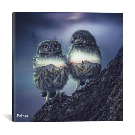 "Owl Twins // Paul Haag (18""W x 18""H x 0.75""D)"