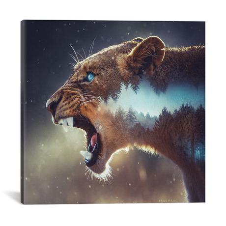 """Predator // Paul Haag (18""""W x 18""""H x 0.75""""D)"""