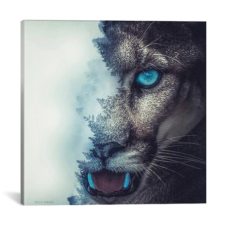 "Puma // Paul Haag (18""W x 18""H x 0.75""D)"