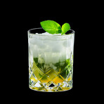 Spey Whisky // Set Of 8